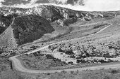 picture of cottonwood  - A black and white scenic view of Cottonwood Canyon Road - JPG