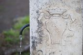 pic of spqr  - Typical public water fountain in Rome - JPG