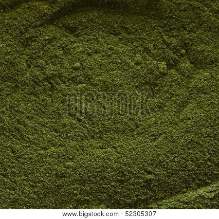 Wheatgrass Powder Close-Up