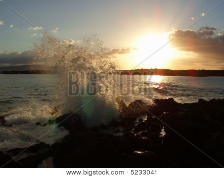 Maui Splash
