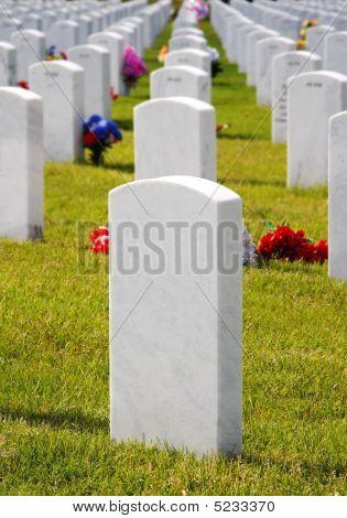 Lápidas del cementerio militar & flores