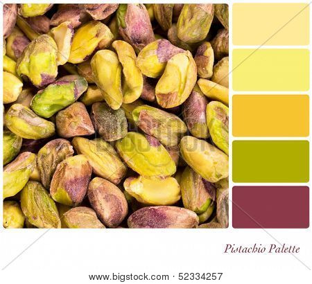 A background of shelled pistachio nuts, in a colour palette with complimentary colour swatches