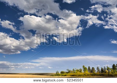 Early Autumn On The Montana Plains