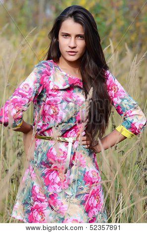 The beautiful woman in dress in field