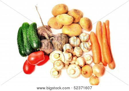 A variety of vegetables on a white background