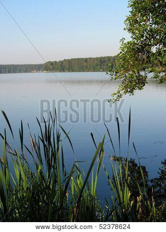 Lake, Island And Bank