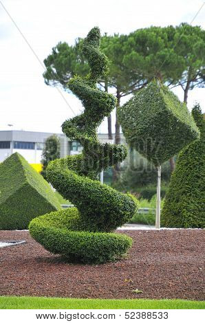 Typical composition with topiary trees grown in nurseries