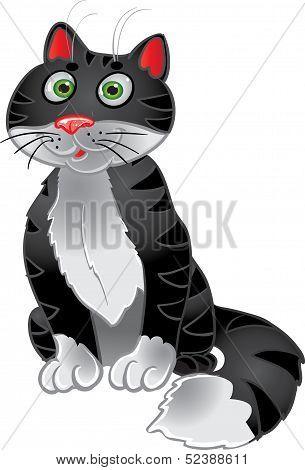 Black funny sitting cat