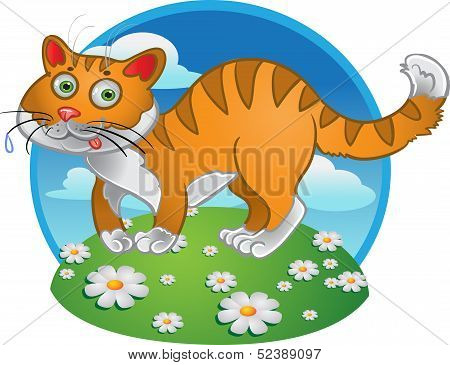 Orange fun cat on color background