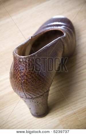Old Fashioned Brown Shoe
