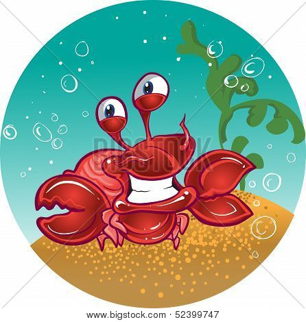 red fiddler crab