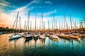 picture of yacht  - Sea bay with yachts at sunset - JPG
