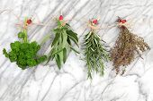 stock photo of peg  - Herbs hanging and drying of parsley - JPG