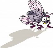 picture of blowfly  - Cartoon vector illustration of funny fly insect - JPG