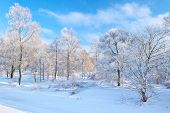 stock photo of snow clouds  - Snowy landscape by the Narew river valley - JPG