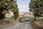 picture of senesi  - View over the clay hills of Crete Senesi in Tuscany Italy - JPG