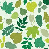 image of linden-tree  - Seamless pattern with hand - JPG