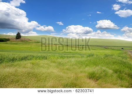 Scenic landscape near Palouse Washington state