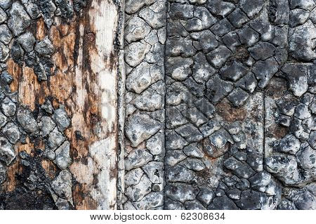 closeup burnt wood texture