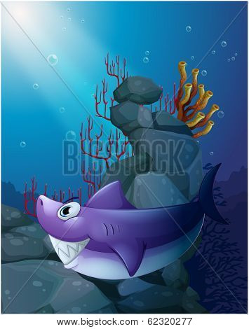 Illustration of a shark under the sea near the rocks on a white background