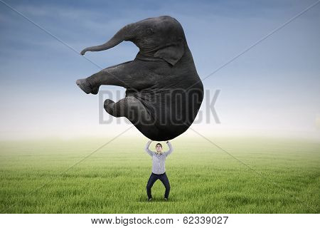 Man Lifting Heavy Elephant