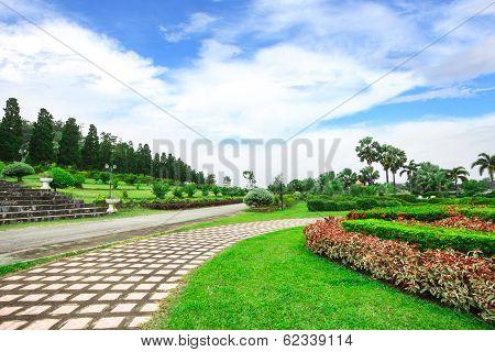 Garden Flowers In Chiang Rai, Thailand