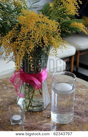 Mimosa flowers in glass vase