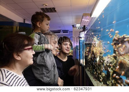 Family Looking At Fishes