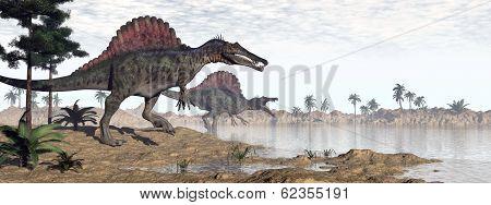 Spinosaurus dinosaurs in desert - 3D render