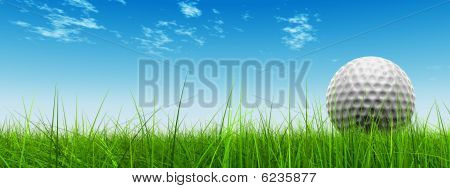 3d white golf ball in green grass  banner