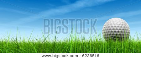 HIGH RESOLUTION 3d white golf ball in green grass on a blue sky