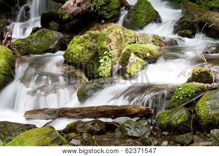 Washington Waterfall