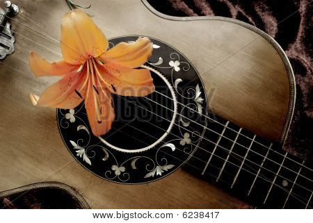 Old guitar with lily