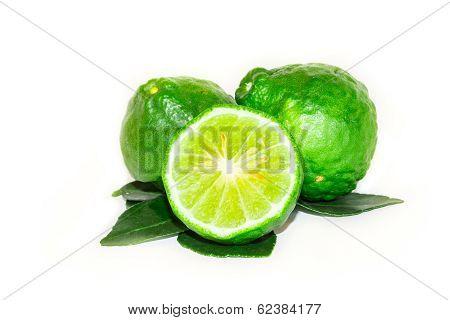 Garden Picked Kaffir Lime For Asian Dish, Isolated On White