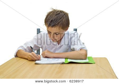 Boy With Homework