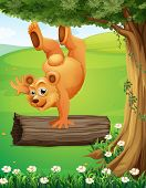 Illustration of a bear at the hilltop playing near the tree
