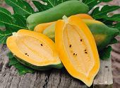 stock photo of groping  - Fresh  Yellow ripe  papaya in the garden - JPG