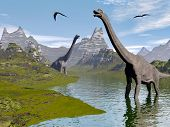 stock photo of pteranodon  - Brachiosaurus dinosaurs walking in water landscape by beautiful day - JPG