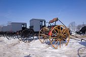 pic of buggy  - Amish buggies and carriages for sale at the annual spring mud sale - JPG