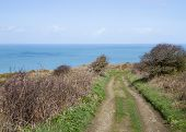 pic of sark  - Coastal scene on Sark looking out over the English Channel - JPG