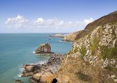 picture of sark  - Coastal scene on Sark looking out over the English Channel