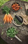 picture of wooden basket  - Fresh organic vegetables - JPG