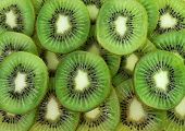 Many Slices Of Kiwi Fruit
