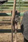 stock photo of wrangler  - Cowboy bull riding gear waits to be used at a bull riding event  at a country rodeo - JPG