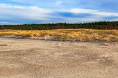 picture of dune grass  - Grass covered dunes on the shores of the Baltic Sea - JPG