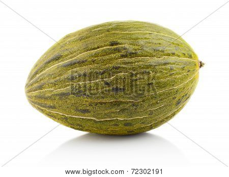 Piel De Sapo Green Melon Isolated White In Studio