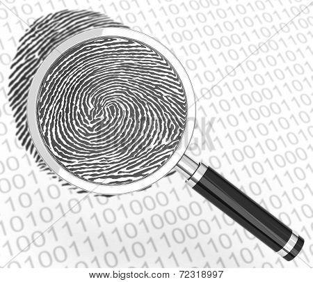 the digital fingerprint