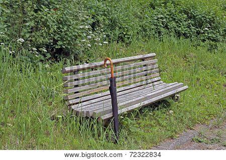 Unpainted Bench And Next  Black Umbrella
