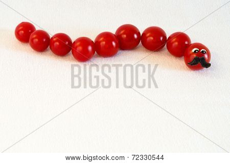 Tomato Catapiller