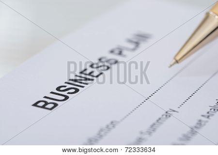 Pen Business Plan Form